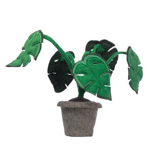 Plant Monstera KidsDepot